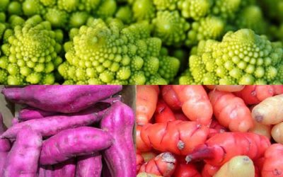 Exotic Vegetables: wake up your plates and palates