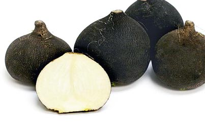 exotic vegetables black radish