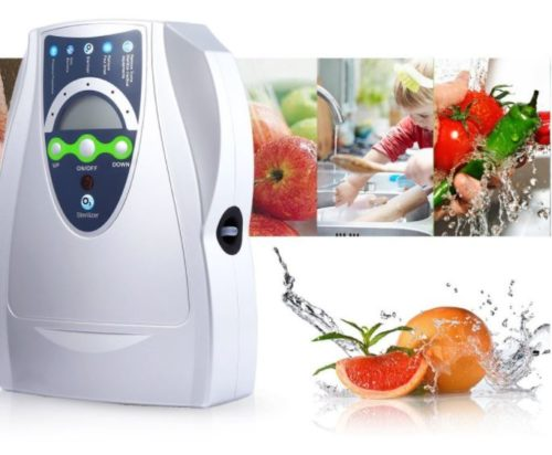 foodie food lover gifts fruit and vegetable sterilizer