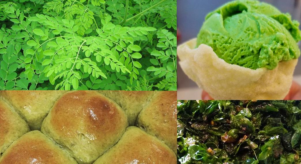 Moringa Malunggay Tree Leaves Tea Oil & Powder Health Benefits
