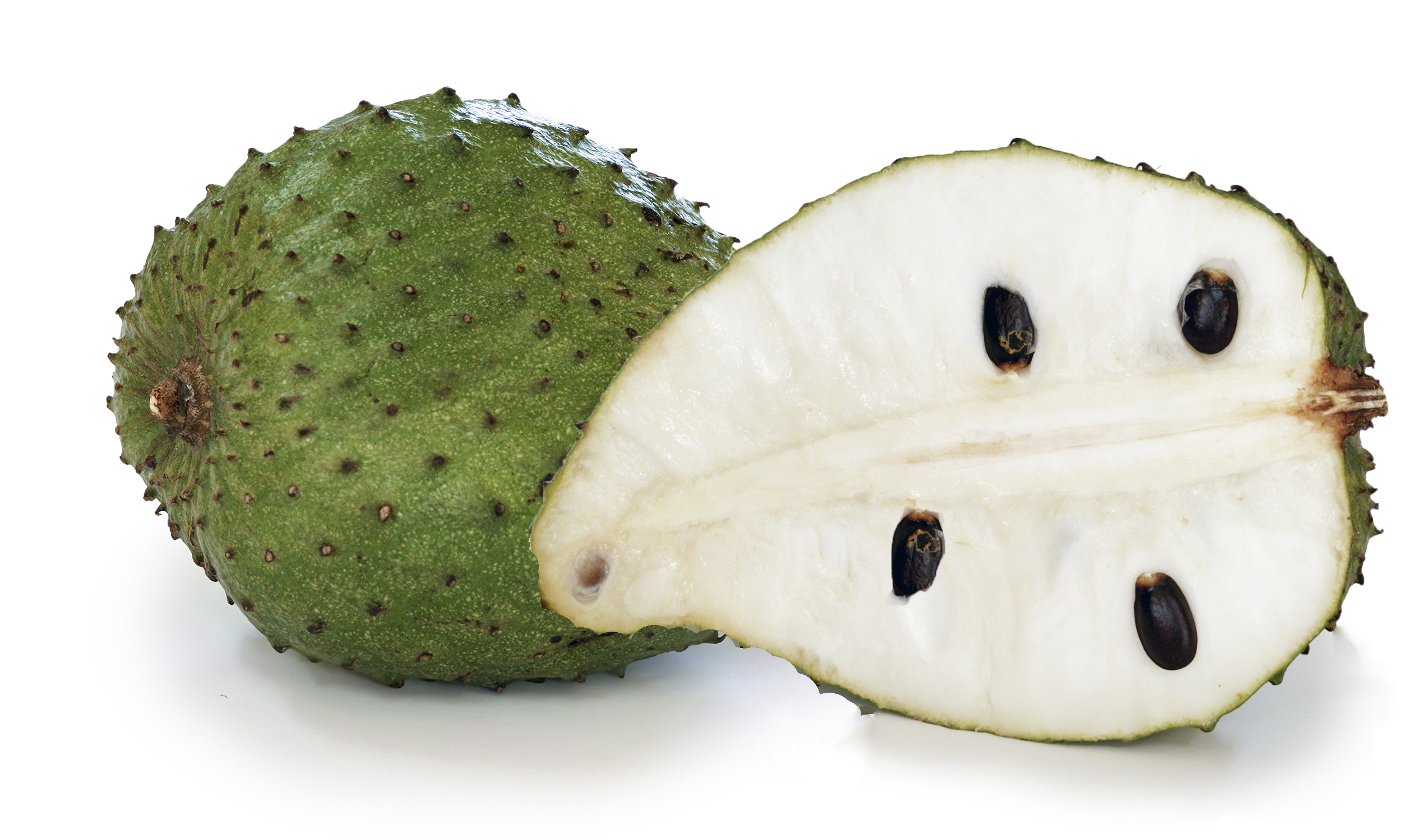 What is where to find buy organic soursop aka guyabano graviola fruit including juice, tea, leaves and plant extract from the annona muricata tree.