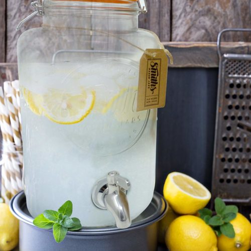 foodie food lover gifts infused water drink dispenser