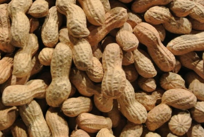 march national peanut month holidays